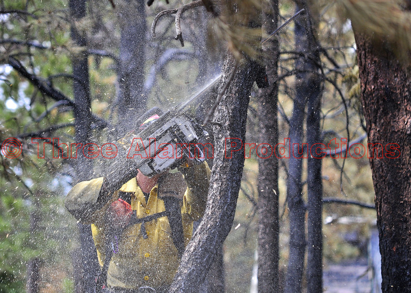 "A firefighter doing hazard tree reduction during the Black Forest Fire Incident, on June 17, 2013.<br /> <br /> See this photo by Three Alarm Productions on InciWeb Incident Information System at:<br /> <a href=""http://www.inciweb.org/incident/photograph/3424/2/"">http://www.inciweb.org/incident/photograph/3424/2/</a>"