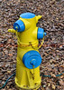 One of the fire hydrants in Windsor, California.