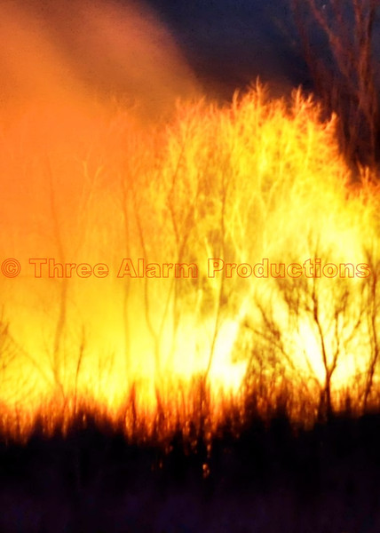 Flames could be seen growing in the tall brush and small trees as fire crews got into strategic positions and brought the wildland fire under control quickly, so that nearby homes were not threatened.