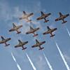 The Canadian Snowbirds at San Francisco's Fleet Week air show