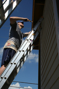 Volunteer up high siding a home.