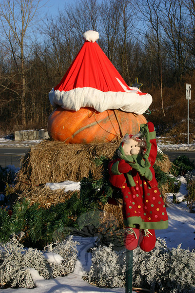 Another view of the Blue Colony Diner pumpkin-turned-Christmas decoration.  (Hicks photo)