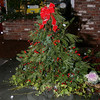 Pine, red ribbons and bows, and holly berries were placed around windows of businesses in Sandy Hook Center in time for this year's Sandy Hook Tree Lighting on December 5.  (Hicks photo)
