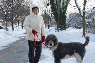 (1) Pslip Slug #: (Pending); (2) Ridgewood, NJ; (3) 01/12/2011; (4) Ridgewood Responds to Another Snow Storm; (5) Sue Hurley and Ryder enjoy a walk on 1/12/2011; (6) W.H. Grae for the Ridgewood News.