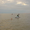 Turtle Crawl Safety at Jekyll Island provided by Lighthouse Dive Services 05-13-17