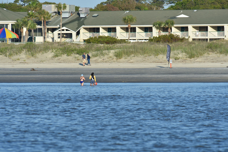 Turtle Crawl Safety at Jekyll Island provided by Lighthouse Dive Services 05-14-16