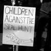 Canadians Against the Commercial Seal Hunt rally :