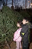 Pardiss Kaviani (7 yrs old) and her brother, Navid (9 yrs old) look over the trees for sale at the Cabin John Park Fire House.