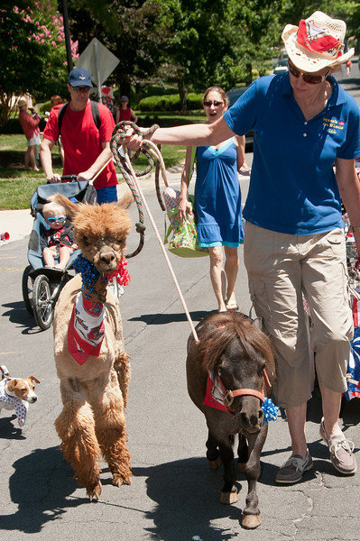 """July 4th at River Falls: Jill Phillips of """"Squeals on Wheels"""" with Alpaca """"Teddy"""" and minature horse """" """"Captain Jack Sparrow"""""""
