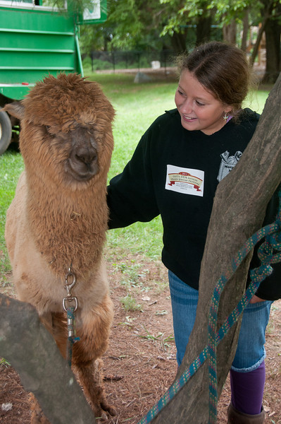 "Ava Stevenson (10 years old of Sandy Spring)  with ""Teddy"" the Alpaca.  Ava attends the JEWEL Hebrew School."