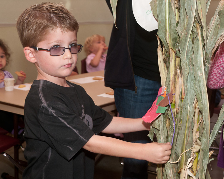 Four year olds Gavin Keller hangs construction paper apples from the dried corn plants.