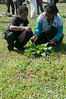 Jahiem Pinnock (9 years old from Silver Spring) and Faith Hands (11 years old from Hyattsville) examine some plants growing wild on the organic farm.