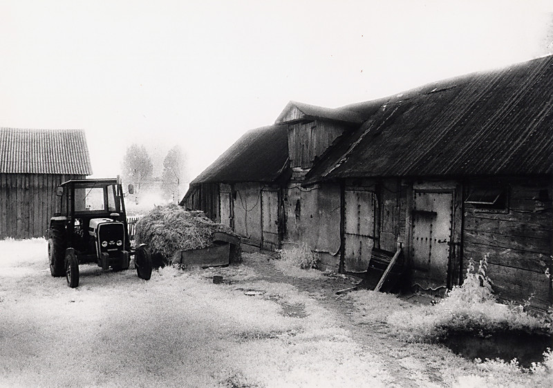 """Farm in Zoltance<br /> <br /> With Polish borders redrawn after the war, the Anna's farm and my mother's former home in Kowel  became part of the USSR. The Kucharska's moved west to the village of Zoltance to remain within Poland. Although the two women did not meet again until 1979, my mother always remained in contact with Anna Kucharska until her death, and continues to call, write letters and send packages to her son, daughter and grandchildren. <br /> <br /> When we arrived in Zoltance, to the farm on which Anna Kucharska had lived, I was drawn to the barn. Although it was not """"the"""" barn in which my mother sought refuge, the setting was the same; a few exterior loose boards that served as a secret entryway and the piles of hay next to the cows that provided bedding and an additional hiding place during random searches. It was always hard to imagine how young girls could leave their home and be in hiding for years. Seeing the countryside and the """"hiding spot"""" did not make it easier."""