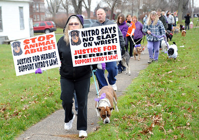 Several hundred dog owners march in a 'Justice for Herbie' dog walk, leaving Streator Park to Veterans Memorial Park in Lorain on Dec. 9.  The walk calls attention to  animal abuse and neglect in the wake on the abused Herbie, found by police on W. 11st in Lorain.  Steve Manheim