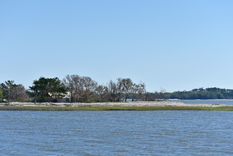 Little Racoon Key across from Jekyll Island - Tent 04-17-18
