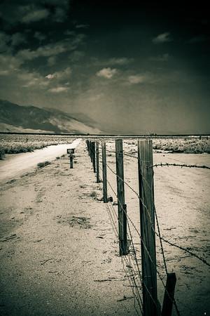 Barbed Wire Fence, Manzanar