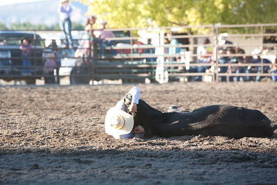 Montrose Fair and Rodeo 2011-17
