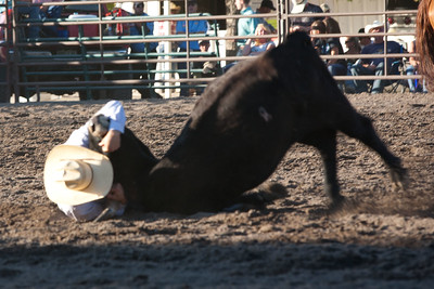 Montrose Fair and Rodeo 2011-16