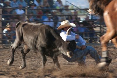 Montrose Fair and Rodeo 2011-13