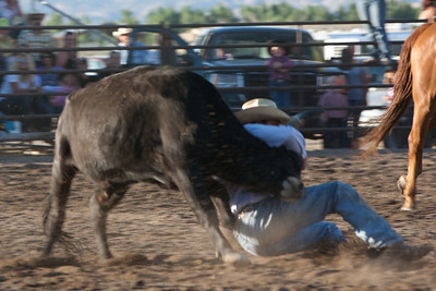 Montrose Fair and Rodeo 2011-14