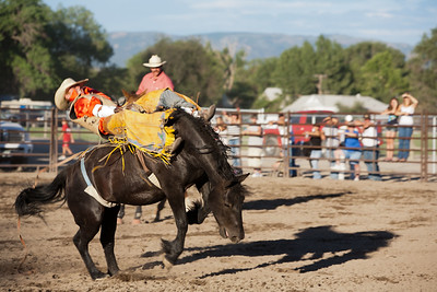 Montrose Fair and Rodeo 2011-26