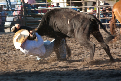 Montrose Fair and Rodeo 2011-15