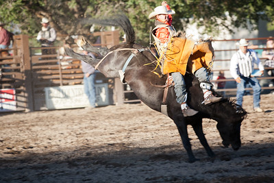 Montrose Fair and Rodeo 2011-25
