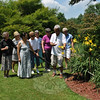 Dr Efren Rebong discusses the qualities of day lilies with members of the Danbury Garden Club, Monday, July 15. Dr Rebong and his wife Anita, front left, hosted the garden club for a luncheon and tour of the extensive gardens they have created at their Georges Hill property in Newtown. Mrs Rebong is a member of the Danbury Garden Club, and she and her husband count many personal friends among the club members. The 90-degree-plus heat and humidity did not prevent club members Grazina Kenter, Danbury Garden Club President Karen Maontecalvo, Louise Klecha, Susan Von Eggers, Mary Pura, and Judi Fuller, from enjoying the garden tour.   (Crevier photo)