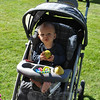 Ten-month-old Thorin Ekman enjoys a Connecticut pear at the Farmers Market at Fairfield Hills, Tuesday, September 25.    (Crevier photo)