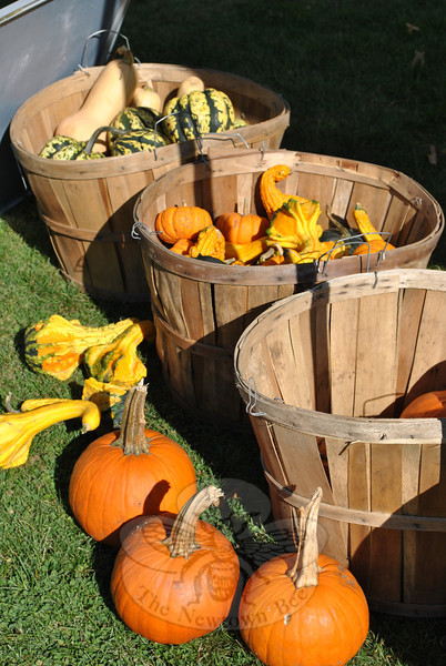 Winter squashes are autumn favorites for shoppers at Connecticut farmers' markets.    (Crevier photo)