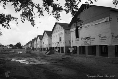 Musicians Home Project in the Ninth Ward, New orleans. Rows of new homes one year post hurricane Katrina.