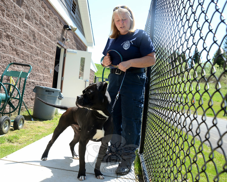 Animal Control Officer Carolee Mason steps outside with Madden, a dog up for adoption at the new Brian J. Silverlieb Animal Care and Control Center of Newtown Thursday, May 16. (Bobowick photo)