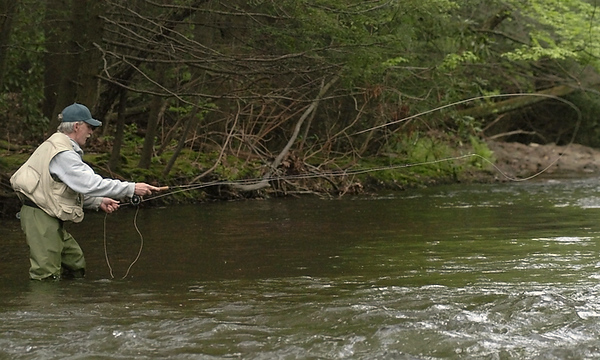 BLAINE FALKENA/Hazleton Standard-Speaker<br /> Mike Molnar fly fishes off of Mill Mountain Road in Saint Johns Saturday afternoon, May 17th, 2008.