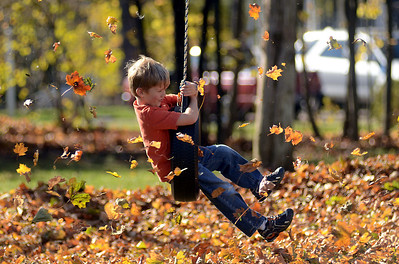11/12/11 Medfield- Owen McEntee, 6, of Medfield, swings on a tire swing while landscapers use leaf blowers to clean up his front yard during Monday afternoon's warm weather. Photo by Sean Browne, Medfield Press