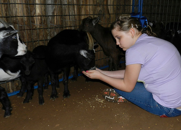 Oklahoma School for the Blind eighth-grader Brittany Bales of Muskogee feeds goats from the palm of her hand during the school's Western Heritage Day at Silver Spur Western Lodge. OSB students petted small farm animals, rode horses and ponies and tried their skill on mechanical bulls during the event.