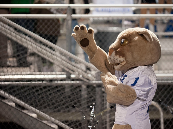 Champ, the Grace Community School cougar mascot pretends to play the cymbals with the drum line during their football game against Houston Second Baptist's at Clyde-Perkins Stadium in Tyler Friday Nov. 13, 2015.  (Sarah A. Miller/Tyler Morning Telegraph)