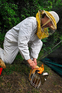 Lowry Nature Center naturalist Mary Vanderford burns cedar chips and cardboard in a smoker to keep attack drone bees from stinging her and her associates while working with the hives.  Vanderford wears a full bee suit and says she gets stung about once a year.
