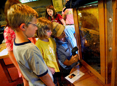 Carver Park naturalist and Bee Buzz instructor Mary Vanderford, center, uses a flashlight to point out  bee larvae and pupae in the Lowry Nature Center's observation hive before venturing outside to see active hives Sunday, July 27 in Victoria.