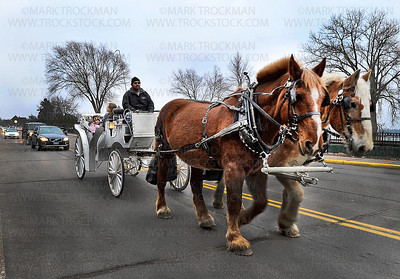 Bayfront Carriages owner Andrew James guides his two Bergeron horses, Mick, left, and Barney, along Lake St. E. in Wayzata with a carriage full of passengers during a free carriage ride during Wayzata's Holiday kickoff Friday, Nov. 30.