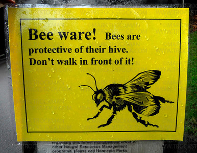 A sign outside a Lowry Nature Center classroom tells visitors to be careful around the observation hive, Victoria, Minnesota.