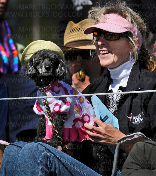 Lee Anne Gustafson, Edina, sits with her 13-year-old toy poodle, Edith Dinah, on the sidelines of the 26th Annual James. J. Hill Dachshund Races held Saturday, Sept. 11, 2010, on the grounds of Wayzata West Middle School.