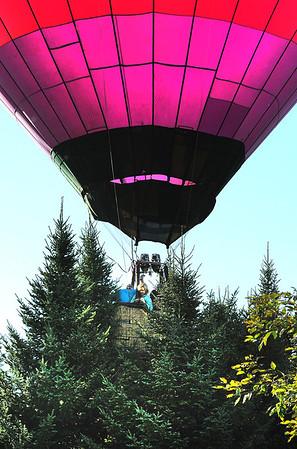 Raspberry landing