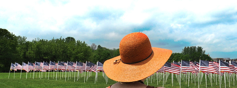 "Linda Simones looks out over the sea of flags Saturday morning at Simard-Payne Memorial Park in Lewiston.  The display of 400 flags, described as a ""Field of Honor"", is a fundraiser for the Auburn Exchange Club. The civic group hopes to raise money by selling all of the 400 flags at $40 each. Proceeds will fund its charity work."