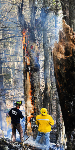 Dozens of firefighters from several communities responded to a woods fire on Youngs Corner Road in Auburn Saturday afternoon after a controlled burn got out of hand and spread to the woods where it charred about 4 acres.