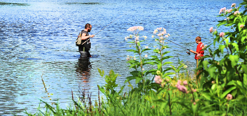 "Steve Hare of Auburn wades through the shallow water of the Little Androscoggin River where it meets the Androscoggin River in New Auburn Monday afternoon looking for crawfish.  ""Up in Turner where we used to live we would catch crawfish in the shallow water and then cast them out in the deeps to catch the really big fish.""  After having no luck finding crawfish,  his stepson Alex Frost, 8, hooked on a rubber worm to try his luck."