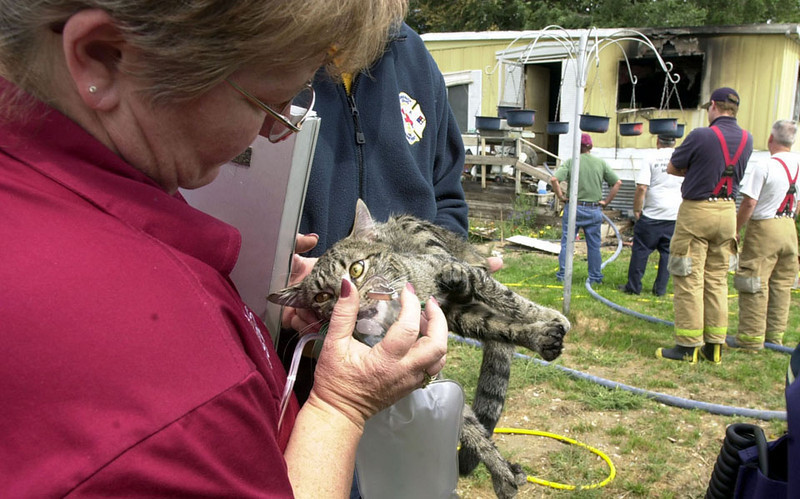 Journal photo by Bill Schaefer<br /> Chubbuck Emergency Medical Technician Vicky Morse resuscitates house cat Six-pack following a house fire on Michaud Creek Road Saturday morning.