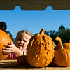 Abigail Langemann, 4, places her pumpkin on the counter Wednesday afternoon at the St. Paul's Episcopal Church pumpkin patch on Firetower and Arlington.