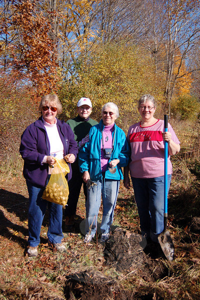 Members of Newtown General Federation of Women's Clubs, Inc took advantage of a break in the rainy weather on October 29 to plant bulbs near Al's Trail at Fairfield Hills. From left, Coke Cramer, Janet Stockalis, chairperson of the GFWC, Inc conservation committee, Ginny Chiramonte, and Shirley Ferris prepare to put in 150 daffodil bulbs. The Newtown GFWC, Inc planted more than 200 bulbs near Al's Trail last fall, and has planted dozens of trees and thousands of bulbs in public places around Newtown over the years.  (Crevier photo)