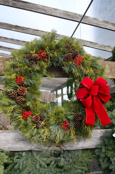 White pine, blue spruce, and golden cypress are artfully combined with clumps of red ber-ries, pine cones, and a handmade bow to create a lush and natural wreath at Shakespeare's Garden.  (Crevier photo)