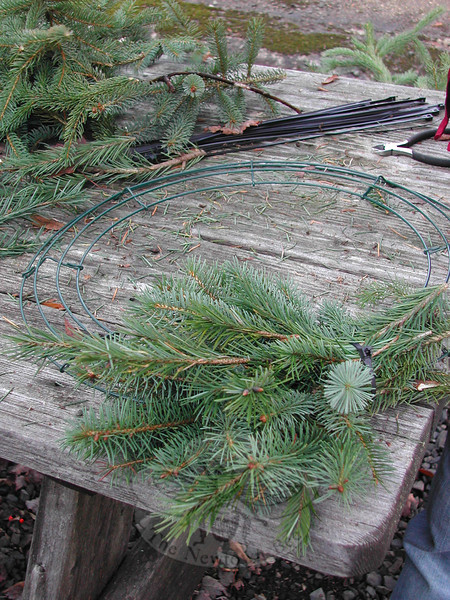 Homemade wreaths can be fashioned on not just circular rings, but on festive shapes such as the star or tree, or in square or rectangular shapes.  (Crevier photo)